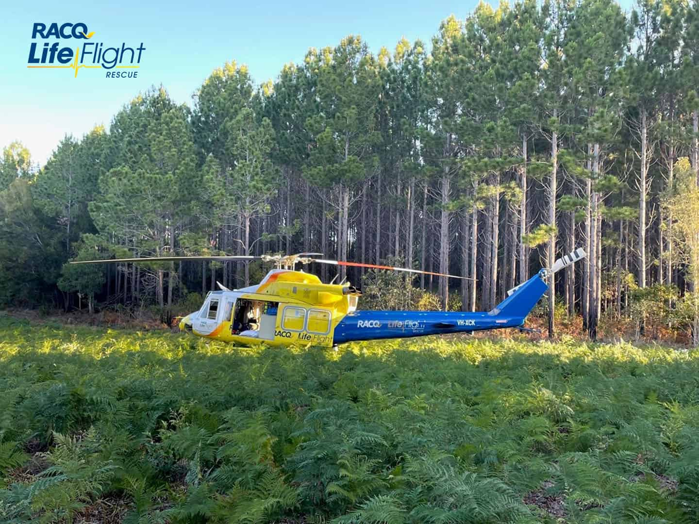 RACQ LifeFlight Rescue lands in state forest to airlift injured man to hospital